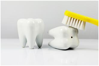Basic Teeth Cleaning